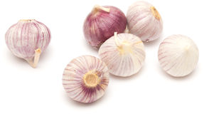 Single clove garlic Stock Image