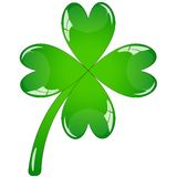 Single clover leaf Royalty Free Stock Photos