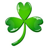 Single clover leaf Royalty Free Stock Photo