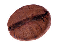 Single coffee bean isolated on white. Background royalty free stock photo