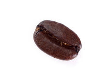 Single coffee bean. Isolated on white background stock photography