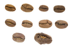 A single coffee bean isolated on white background . Stock Photography