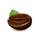 Single coffee bean with leaf isolated on white Royalty Free Stock Photos