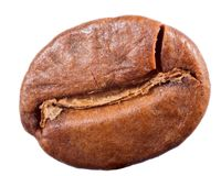 Single coffee bean on white. Single coffee bean isolated on white background royalty free stock image