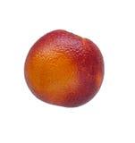 Single colorful red sicilian orange isolated on white. Single juicy colorful red sicilian orange isolated on white Royalty Free Stock Photo