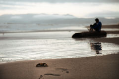 Single crab on the beach. With a man in the background Royalty Free Stock Photography