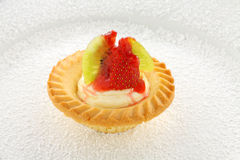 Single Cream Tart Royalty Free Stock Photography