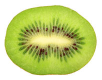 Single cross section of kiwi Stock Image