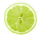 Single cross section of lime Royalty Free Stock Image