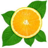 Single cross section of orange with green leaf Stock Image