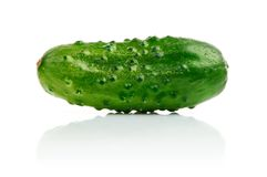 Single cucumber fruit isolated on white Stock Image