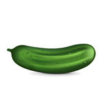 Single cucumber isolated on white Stock Images