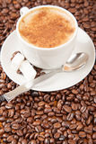 Single cup of cappuccino surrounded by coffee beans. Single cup of cappuccino and sugar cubes surrounded by coffee beans Royalty Free Stock Photo