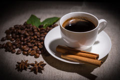 Single cup of coffee with cinnamon and spices Stock Photography