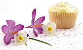 Single Cupcake With Purple Sprinkles. Focus On The Cupcake Royalty Free Stock Photography