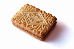 Single custard cream Stock Image