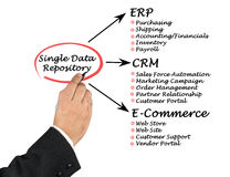 Single Data Repository Royalty Free Stock Image