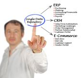 Single Data Repository Royalty Free Stock Photography