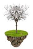 The single dead tree. Royalty Free Stock Photo