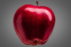 Single delicious red apple on grey background stock photography