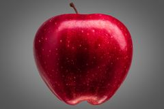 Single delicious red apple on grey background royalty free stock image