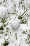 Single dimpled golf ball in the snow Royalty Free Stock Image