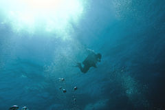 Single diver in sea in the sunlight on a background of blue wate Stock Photography