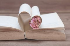 Single, dried pink rose on the old Heart shaped book, pink tones. royalty free stock images