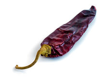 Single Dried Red Chili (Chile). Single chili pod (dried) and isolated on a white background Royalty Free Stock Photos