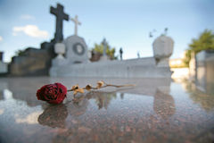 Single Dried Rose on Tomb in Graveyard Royalty Free Stock Images