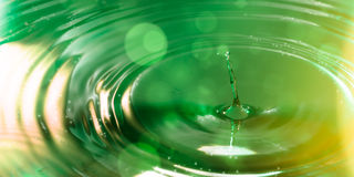 Single drop against green Stock Photos
