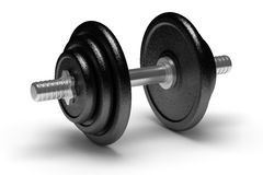 Single Dumbbell royalty free stock images