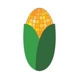 Single ear of corn Royalty Free Stock Photo
