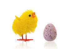 Single easter chick with a chocolate egg Royalty Free Stock Photography
