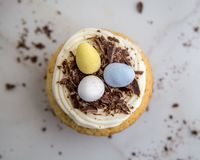 Easter Egg Candy Cupcake Top View on Marble. A single Easter egg candy cupcake with vanilla frosting, chocolate sprinkles on a marble table top Royalty Free Stock Photos