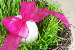 Single Easter Egg in Grass Stock Image