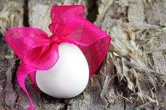 Single Easter Egg with Purple Bow Royalty Free Stock Photo