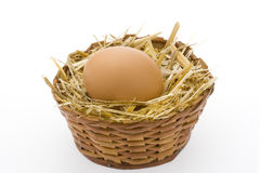 Single Egg. Basket Organic Food Royalty Free Stock Photos