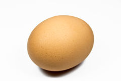 Single egg Royalty Free Stock Image