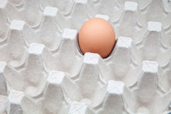 A single egg Stock Photos