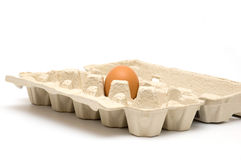 Single egg in carton Stock Photo