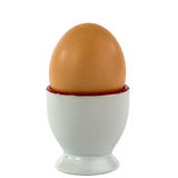 Single egg in egg cup isolated on a white background royalty free stock photography