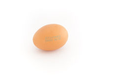 Single egg with expire date Stock Image