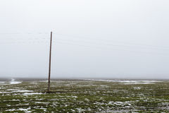 Single Electric pole in a field with snow in winter Stock Photography