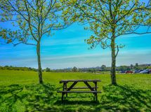 Single empty wooden picnic table set between two trees on grass looking towards  view of London. Single empty wooden picnic table set between two trees on grass royalty free stock photography
