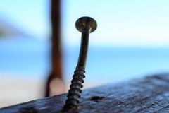 Single Eye Bolt in Wood royalty free stock photo