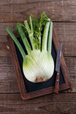 Single fennel bulb over dark wooden background Royalty Free Stock Photos