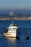 Single fishing boat moored in the harbor of Monterey, California Stock Photos