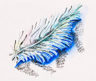Single fluffy feather Stock Image