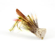 Single fly-fishing grasshopper fly Stock Images